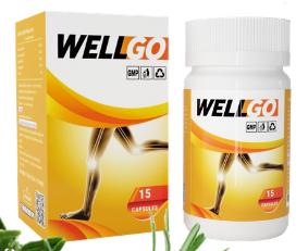 WellGo - คือ - ดีไหม - วิธีใช้